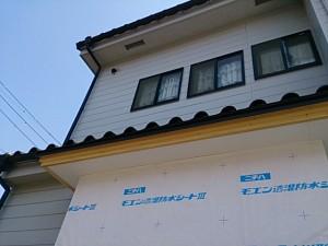 DSC_4616.jpg